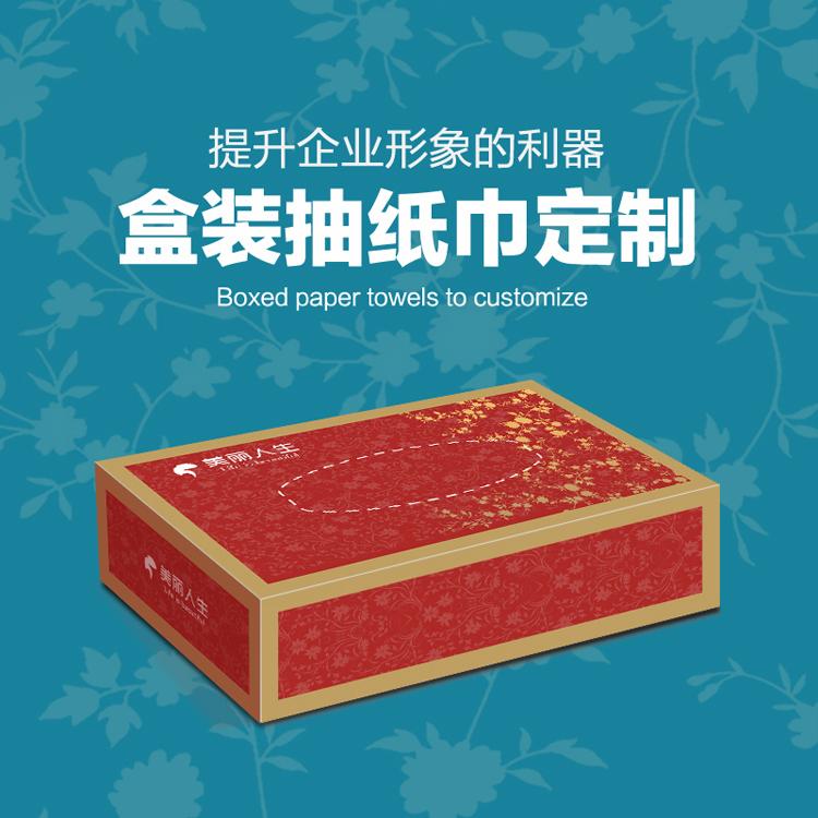 今天下单 明天发快递抽纸盒500盒 170x105x50 2层30抽 250克白卡单面光膜